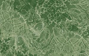 3142/G60 - Delicate Lace