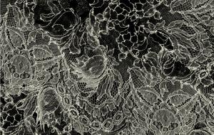 3142/X10 - Delicate Lace