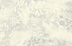 3143/Q30 - Brushed Lace