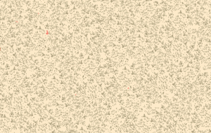 Delicate Textures 6794 N15