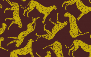 2022/L80 Cheetah