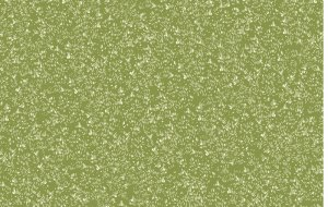 6794/G60 Delicate Texture